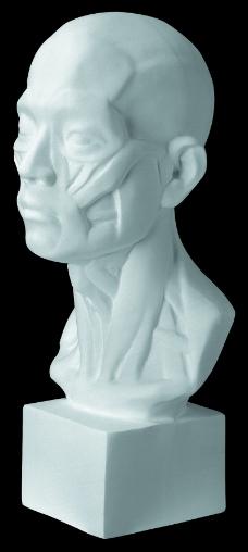 石膏像0082