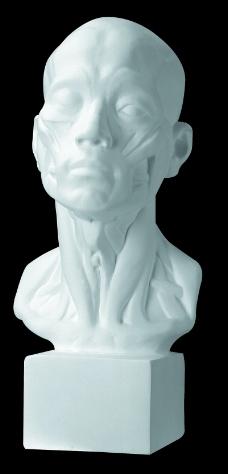 石膏像0083