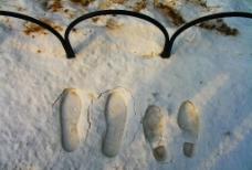 雪中脚印图片