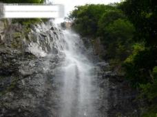山涧,树木,水,瀑布,壁石
