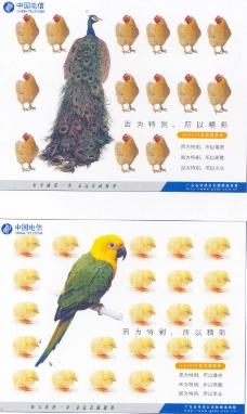廣東廣告獲獎作品0002