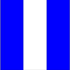 各种旗帜0765