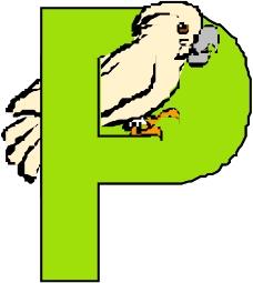 字母0428