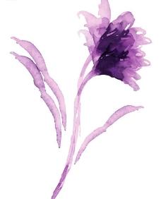 瓷器花纹2图片