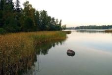 幽靜的湖景图片