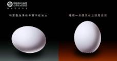 鸡蛋公益广告图片