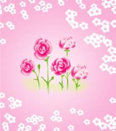粉色花儿图片