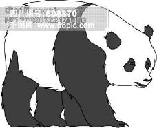 野生动物40