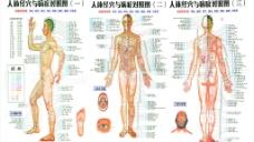 人体经穴与病症对照图(实际像素下非高清)图片