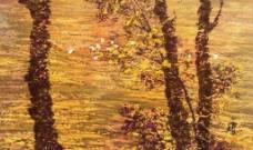 秋天风情图片
