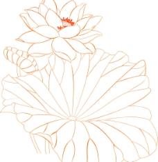 荷花  底纹 花纹图片
