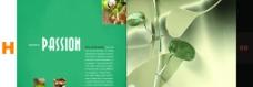 创意图片 画册设计 版式设计