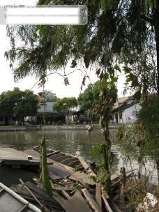 西塘风光 湖水 树 船