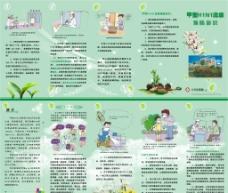 甲型H1N1防护知识五折页图片