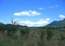 蓝天草原图片