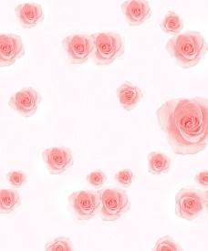 粉红花心图片