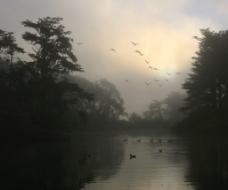 湖边晨雾图片
