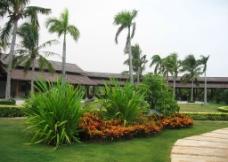 椰岛渡假村图片