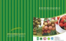四季鲜绿色食品宣传画册封面与封底图片