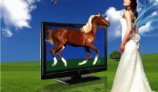 液晶电视广告图片