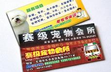 宠物医院卡片图片